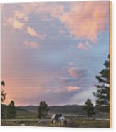 Ulagan Sunset. Mountain Altay Wood Print