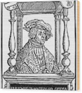Ulrich Von Hutten, German Poet Wood Print