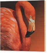 Ultimate Orange Wood Print