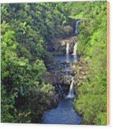 Umauma Falls Hawaii Wood Print by Daniel Hagerman