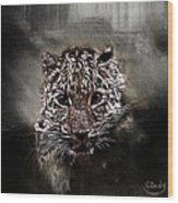 Un Gros Chat A Adopter Wood Print