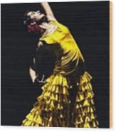 Un Momento Intenso Del Flamenco Wood Print