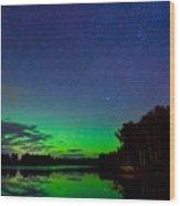 Under An Alien Sky Wood Print by Adam Pender