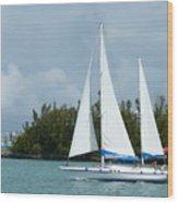 Under Full Sail Wood Print