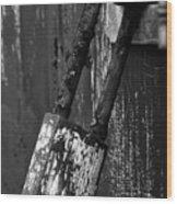 Under Lock And Key II Wood Print
