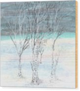 Under Northern Skies Wood Print