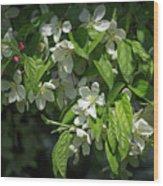 Under The Apple Tree Wood Print