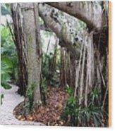 Under The Banyan Tree Wood Print