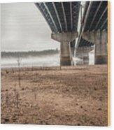 Under The Bridge 3 Wood Print