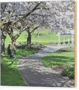 Under The Cherry Blossom Tree Wood Print