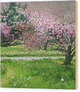 Under The Cherry Tree Wood Print