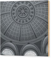 Under The Dome Wood Print