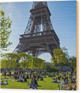 Under The Eiffel Tower, Paris Wood Print