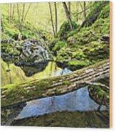 Under The Fallen 2 Wood Print