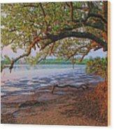 Under The Mangroves Wood Print