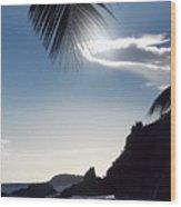 Under The Palm Tree Wood Print
