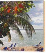 Under The Palms In Puerto Rico Wood Print
