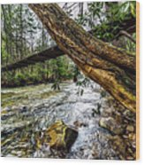 Under The Swinging Bridge Wood Print