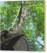 Under The Tire Swing Wood Print