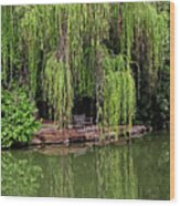 Under The Willows 7758 Wood Print