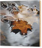 Under Water Fall Wood Print