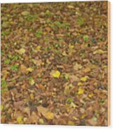 Undergrowth, Leaves Carpet. Wood Print