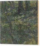 Undergrowth Saint Remy De Provence  July 1889 Vincent Van Gogh 1853  1890 Wood Print