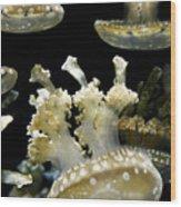 Underwater Life Wood Print