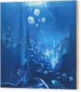 Underwater World Wood Print