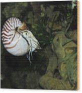 Underwater01 Wood Print