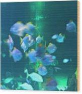 Underwater05 Wood Print
