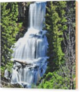 Undine Falls Wood Print