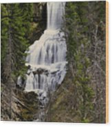 Undine Falls On Lava Creek Wood Print
