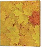 Understory Wood Print