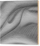 Unfolding And Enfolding -- V Wood Print