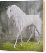 Unicorn In The Forest Wood Print