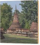 Unidentified Wat Wihan And Chedi Dthst0074 Wood Print