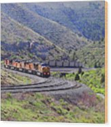 Union Pacific Coal Train In Kyune Utah Wood Print