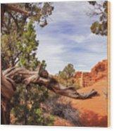 Unique Desert Beauty At Kodachrome Park In Utah Wood Print
