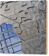 Unisphere Close Up 2 Wood Print