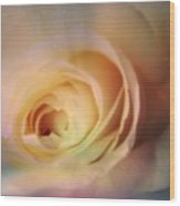 Universal Rose Wood Print