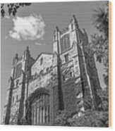 University Of Michigan Law Library Wood Print by University Icons