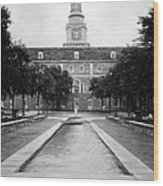 University Of North Texas Bw Wood Print