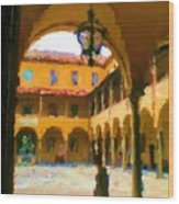 University of Pisa The Law Faculty Wood Print