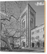 University Of Southern California Administration Building Wood Print