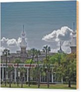 University Of Tampa Wood Print