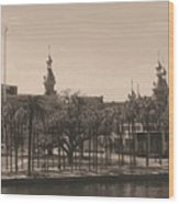University Of Tampa With Old World Framing Wood Print