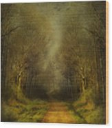Unknown Footpath Wood Print by Svetlana Sewell