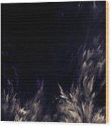 Unknown Light Wood Print