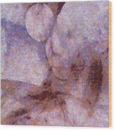 Unlampooned Fineness  Id 16099-043046-41250 Wood Print